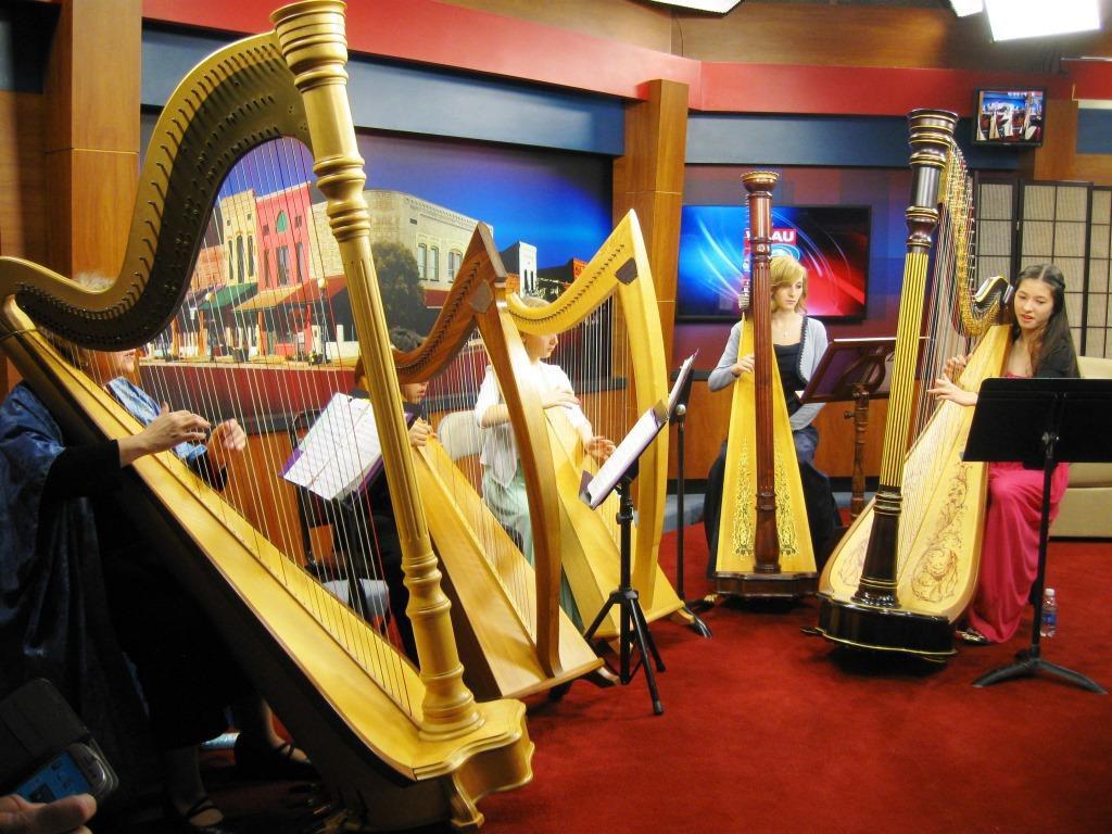 Harp Lessons Omeara Musicomeara Music