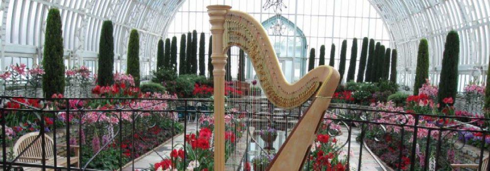 O'Meara Music